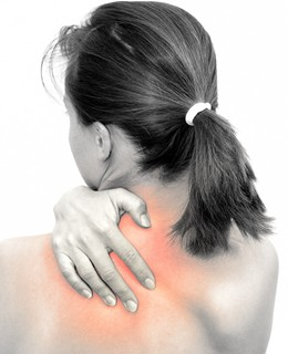 武蔵小山駅徒歩2分の腰痛、膝痛、肩こり専門の鍼灸院|よつばの森【大人バレエでお困りの方】肩甲骨4